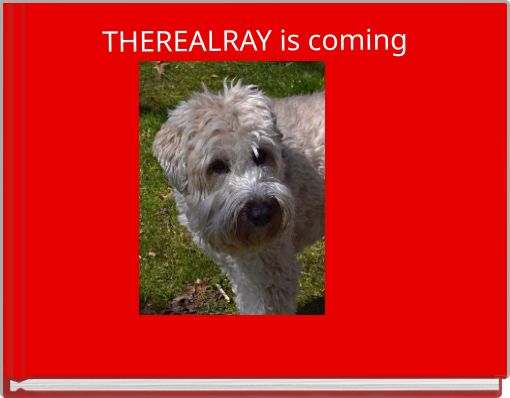 THEREALRAY is coming