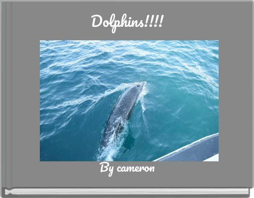 Dolphins!!!!