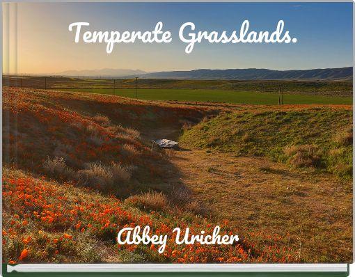 Temperate Grasslands.