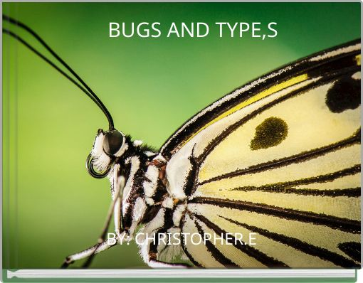 BUGS AND TYPE,S