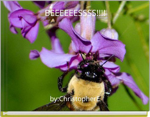 BEEEEEESSSS!!!!