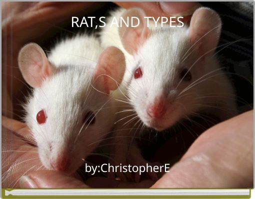 RAT,S AND  TYPES