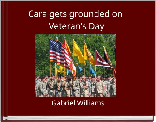 Cara gets grounded on Veteran's Day
