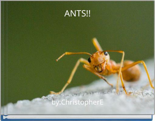ANTS!!