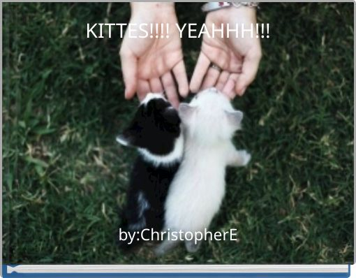KITTES!!!! YEAHHH!!!