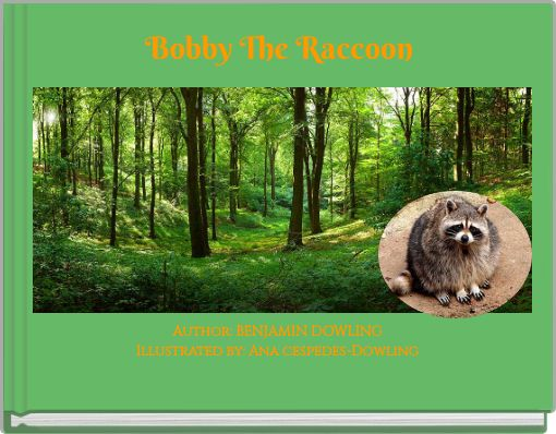 Bobby The Raccoon