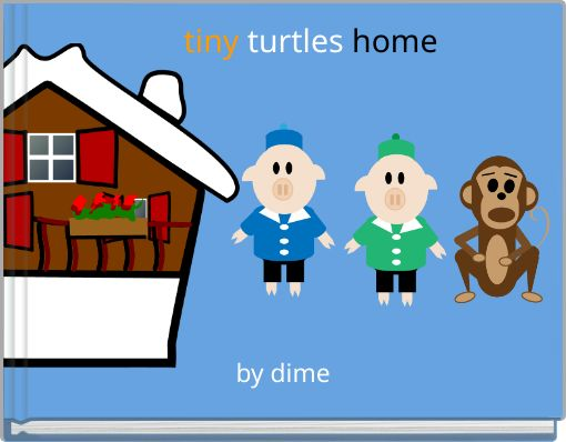 tiny turtles home