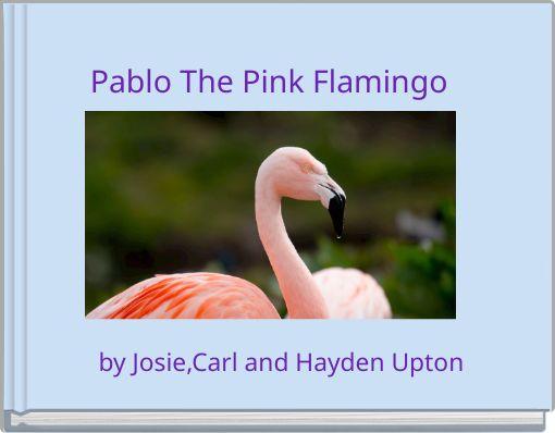 Pablo The Pink Flamingo