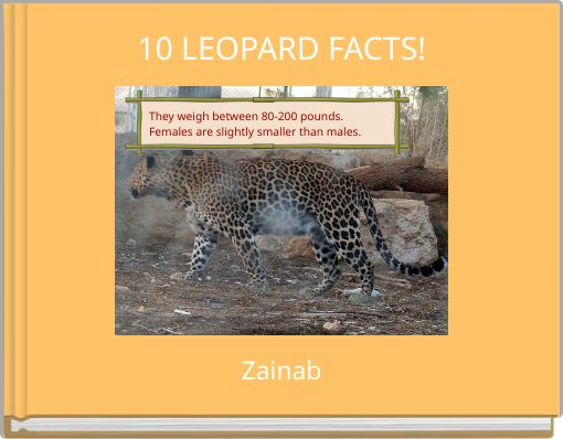 10 LEOPARD FACTS!