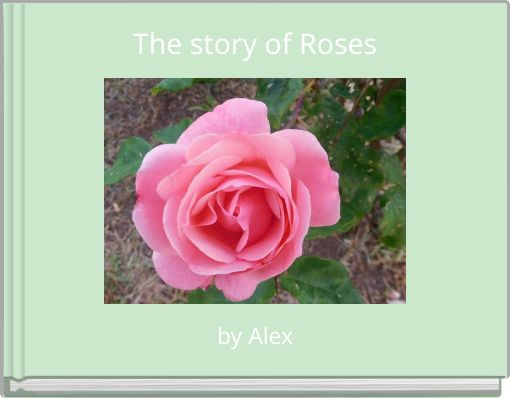 The story of Roses