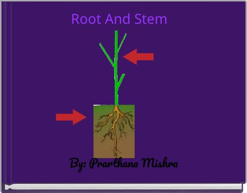 Root And Stem