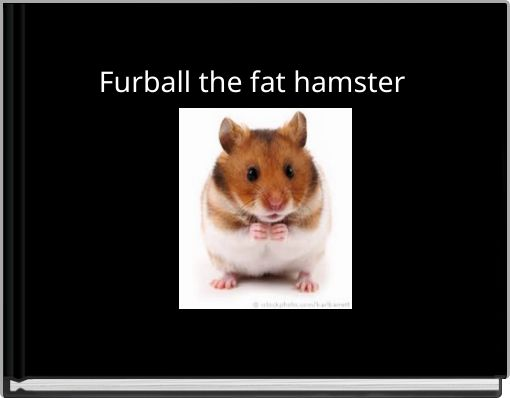 Furball the fat hamster