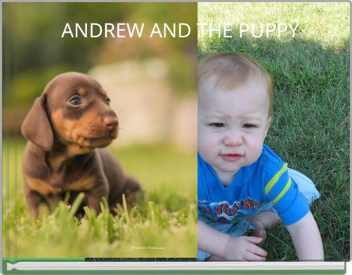 ANDREW AND THE PUPPY