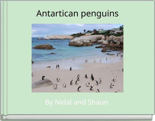 Antartican penguins