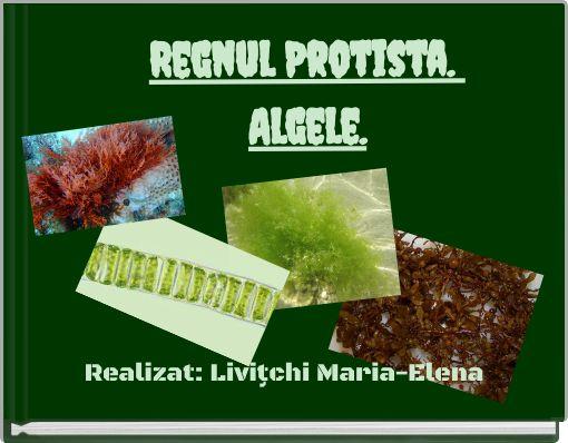 Regnul Protista. Algele.