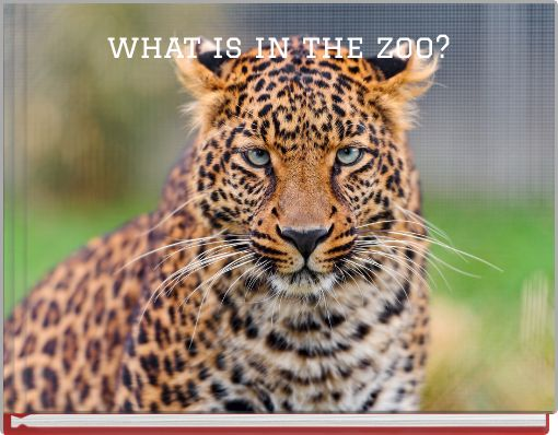 what is in the zoo?