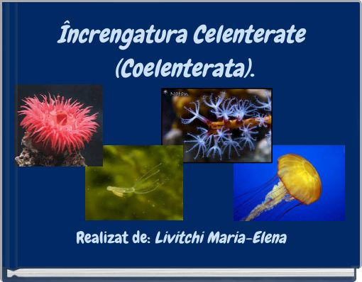 Încrengatura Celenterate (Coelenterata).