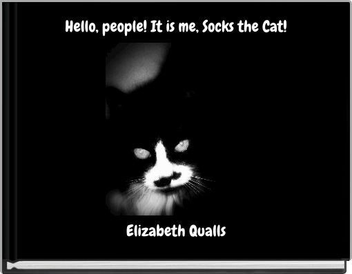 Hello, people!  It is me, Socks the Cat!