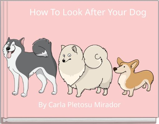 How To Look After Your Dog