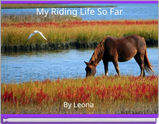 My Riding Life So Far