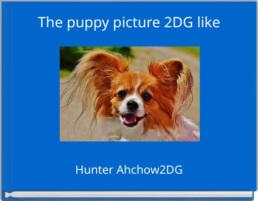 The puppy picture 2DG like