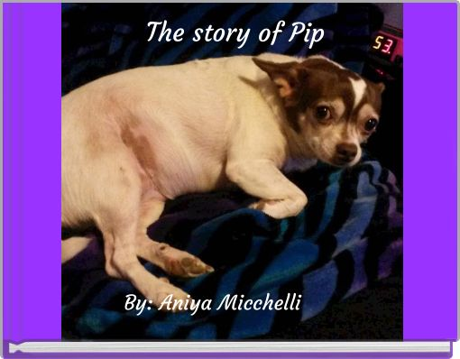 The story of Pip