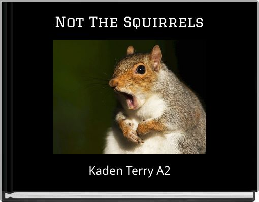Not The Squirrels