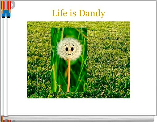 Life is Dandy