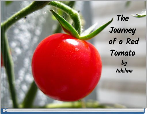 The Journey of a Red Tomato byAdelina