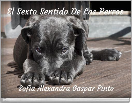 El Sexto Sentido De Los Perros