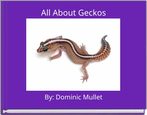 All About Geckos