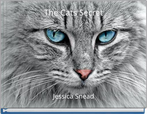 The Cats Secret