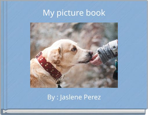 My picture book