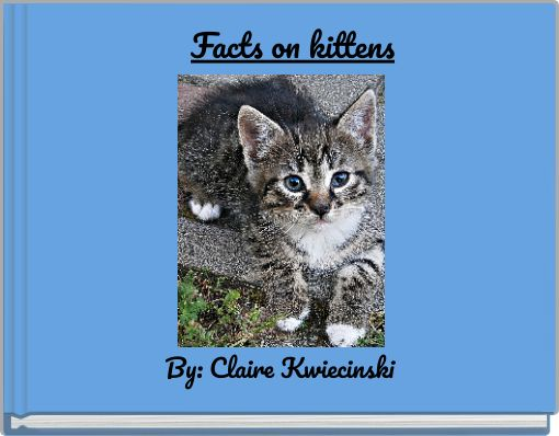 Facts on kittens