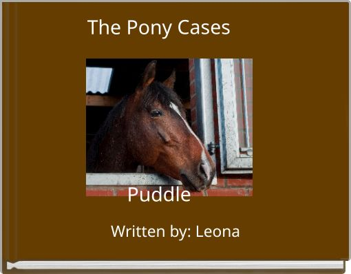 The Pony CasesPuddle