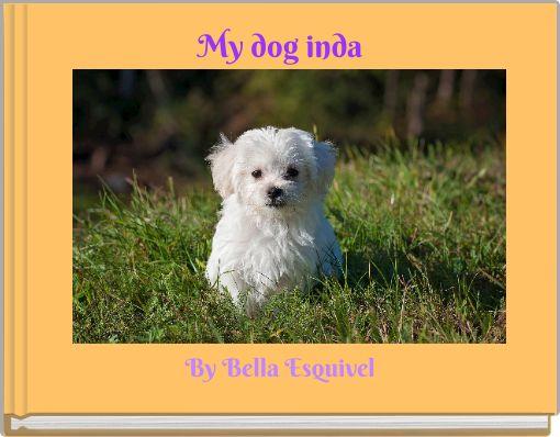 My dog inda