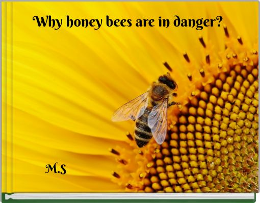 Why honey bees are in danger?