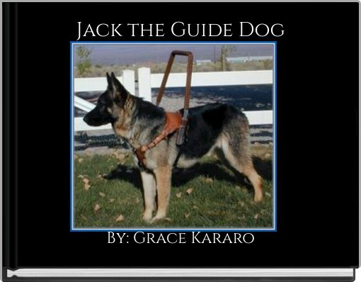 Jack the Guide Dog