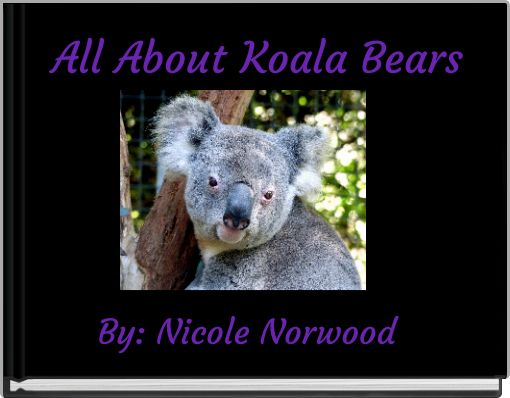 All About Koala Bears