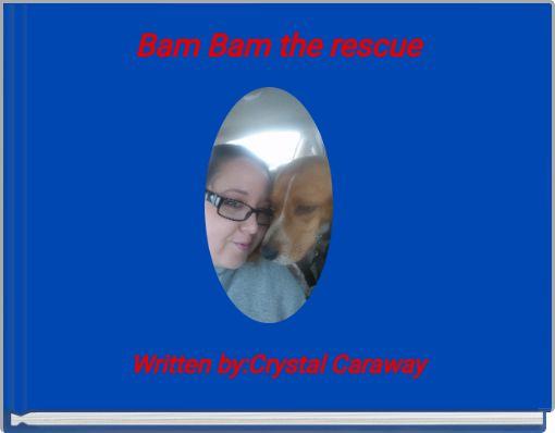 Bam Bam the rescue