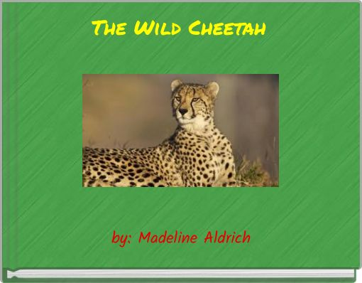 The Wild Cheetah