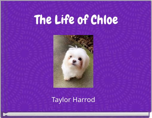 The Life of Chloe