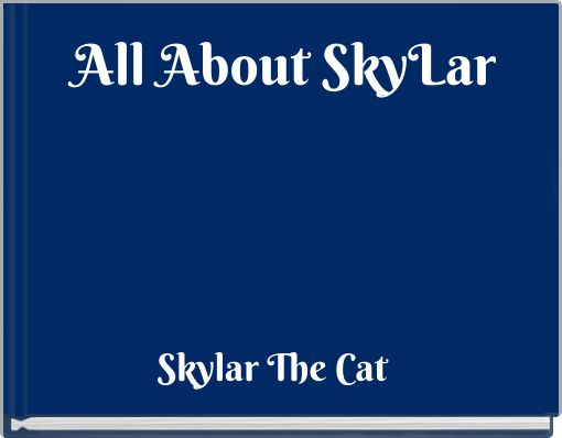 All About SkyLar