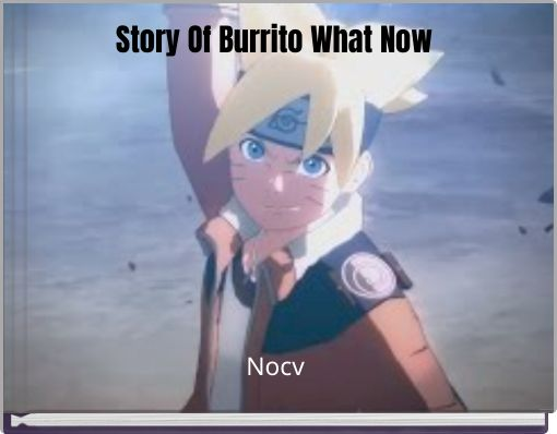 Story Of Burrito What Now