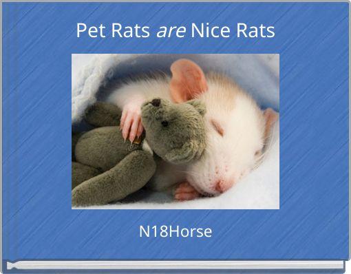 Pet Rats are Nice Rats