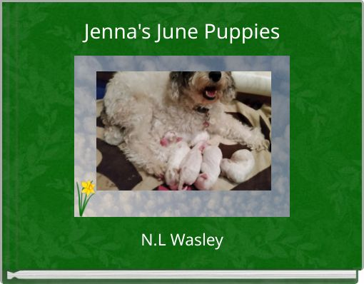 Jenna's June Puppies