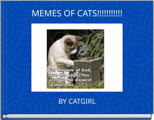 MEMES OF CATS!!!!!!!!!!!