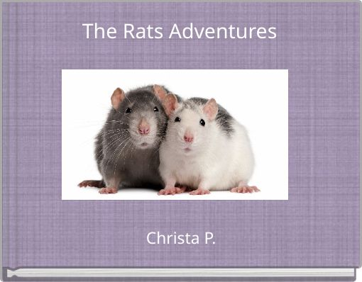 The Rats Adventures