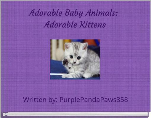 Adorable Baby Animals: Adorable Kittens