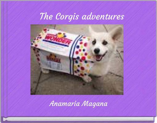 The Corgis adventures